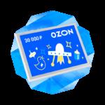Ozon 1